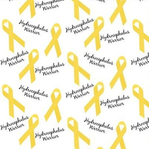 Small Scale Hydrocephalus Warrior Ribbons