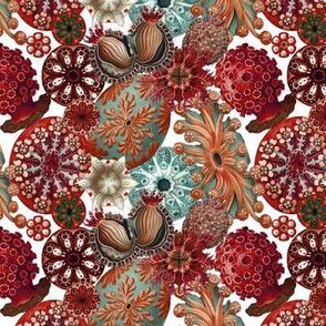 Ernst Haeckel Sea Squirt Toss Deep Reds
