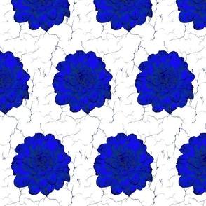 Blue Rose Crackle