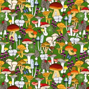 Small Print My Favorite Fungi