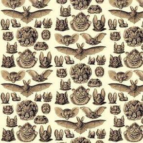 Ernst Haeckel Bats Golden Hour Ditsy