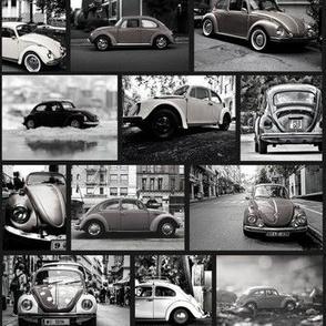 Beetle black and white - Coccinelles noir et blanc  colorées nb small