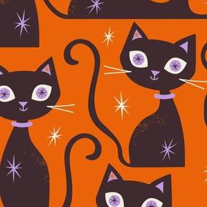 Cats Large Scale Orange