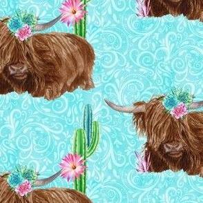 Highlander Cacti