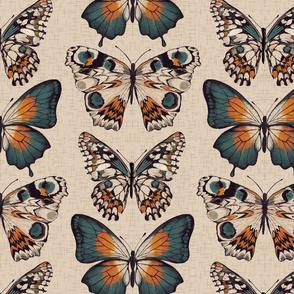 Pinned Butterflies { light }