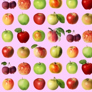 Apples and dots on rose ground