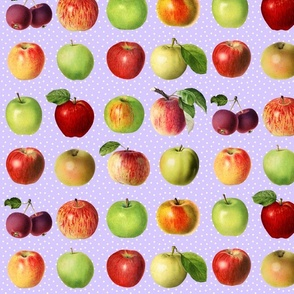 Apples and dots on lavender ground