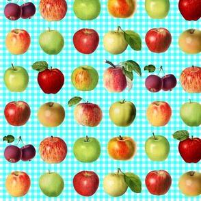 Apples on aqua gingham