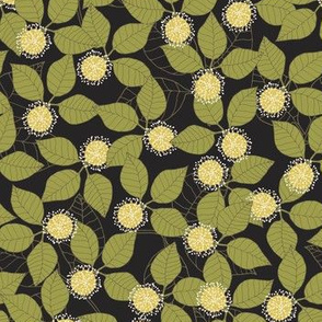Kadam Flower Black