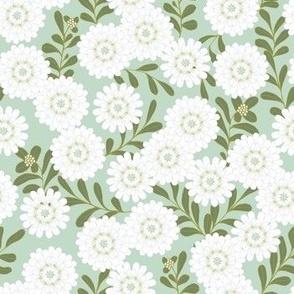 Iberis Mint green/White