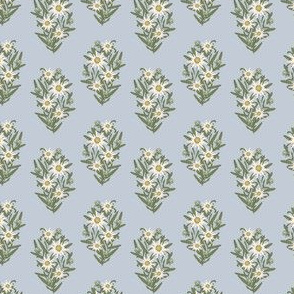 Edelweiss light blue