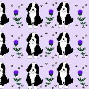 Beardie Pin Geometric Thistle violet