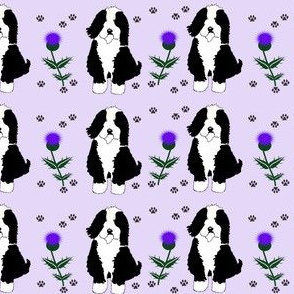 Dog with thistles on violet