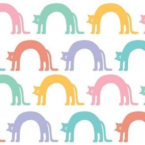 Rainbow Cat Arches