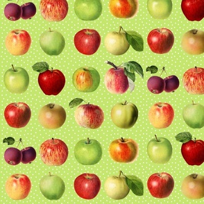 Apples and dots on bright green ground