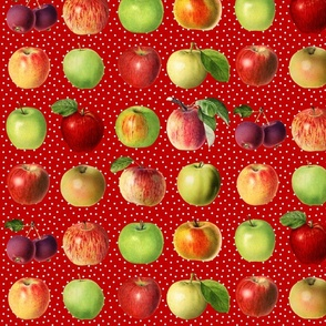 Apples and dots on red ground