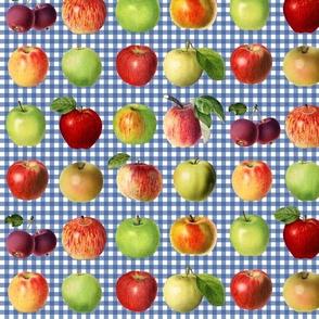 Apples on blue gingham