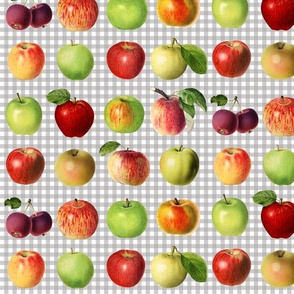 Apples on grey gingham