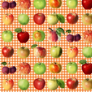 Apples on orange gingham