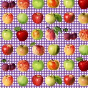 Apples on purple gingham