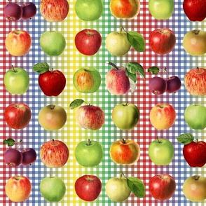Apples on rainbow gingham