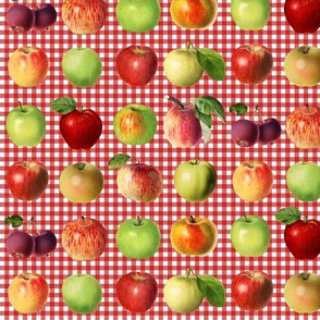 Apples on red gingham