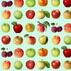 Apples on mint gingham