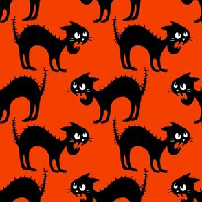 Black Angry Cat on Red