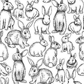 Sketched Bunnies - B&W, Medium scale