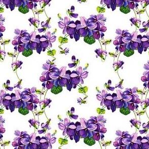 Vintage violets print (small)