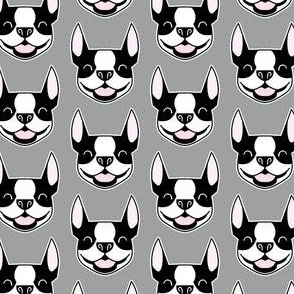 Boston Terrier faces on gray