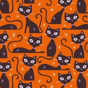 Halloween Cats Small Scale Orange