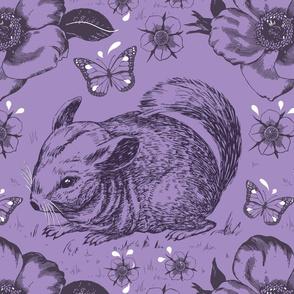 Chinchilla big floral purple