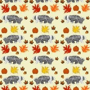 Herding dog among Pumpkins Autumn Leaves Acorns
