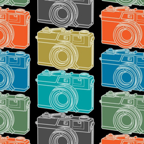 Camera Collector Mania Large Scale