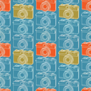 Camera Collection Blueprint