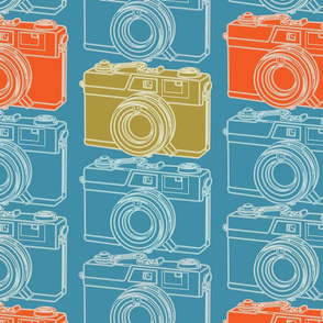 Camera Collection Blueprint Large Scale