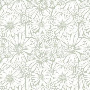 daisies sage