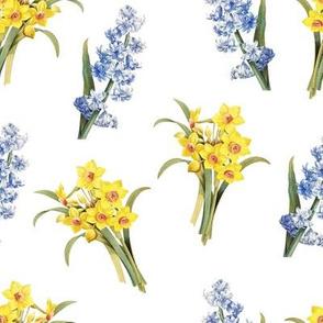 Daffodil hyacinth meadow (large)