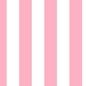 Palm Beach Pink Vertical Tent Stripes Florida Colors of the Sunshine State