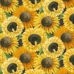 Sunny Season Blooms: Midnight