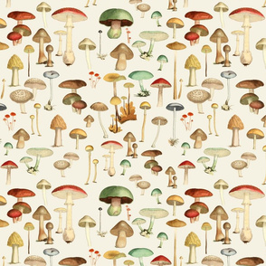 Hike More Mushrooms [no post]