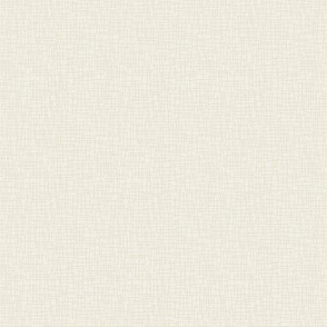 Eggshell Ivory - Textured Solid Color