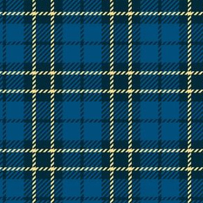 Small Blue Yellow Plaid