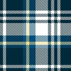 White Blue Yellow Plaid