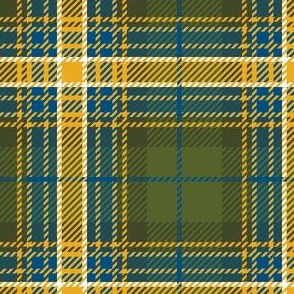 Green Yellow Blue Plaid