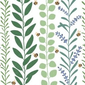 Aromatherapy plants, Eukalyptus sage lavender with bees, leaves plants healing