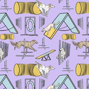 Simple cream Silken Windhound agility dogs - purple
