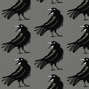 Angry raven on gray – small