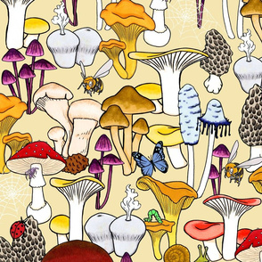 My Favorite Fungi - Beige Background